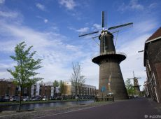 Windmills of Schiedam